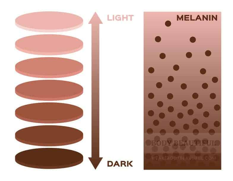 illustrated chart showing light to dark skin tones and the related density of melanin cells in each. Darker skin has a higher concentration of melanin.
