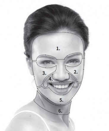Face & neck zone diagram from the Silk'n Factite user guide