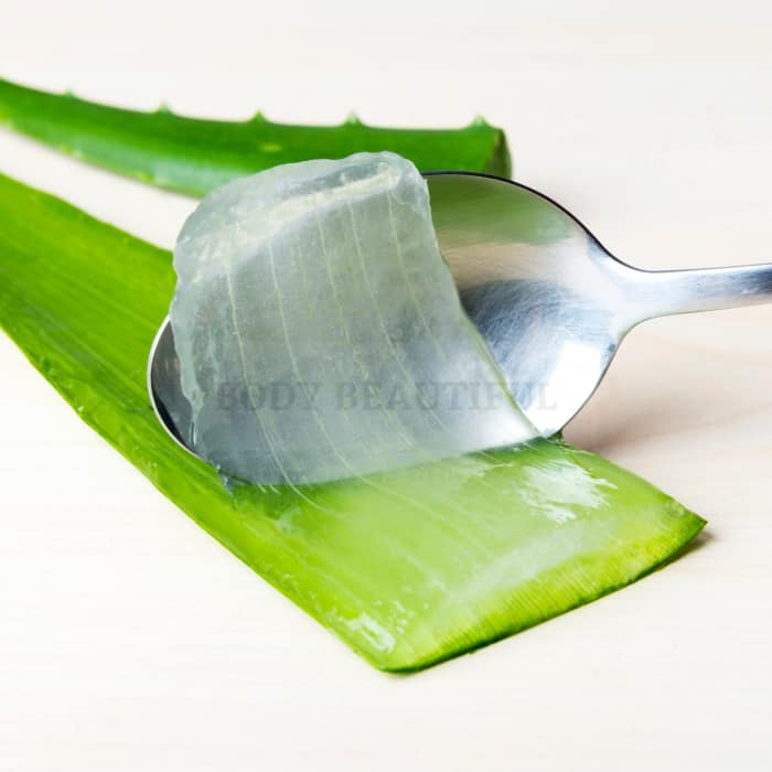 a spoon scooping the juicy flesh of an Aloe Vera leaf